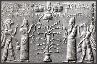 """Résultat de recherche d'images pour """"ARBRE NOEL EGYPTE"""""""